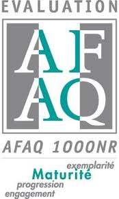 AFAQ1000NR